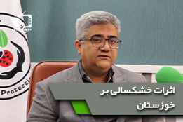 بررسی اثرات خشکسالی های اخیر بر طغیان آفات و بیماری های گیاهی در استان خوزستان