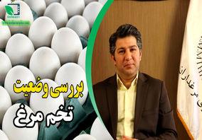 اتحادیه مرغداران به دنبال صادرات تخم مرغ برای جلوگیری از ضرر تولیدکنندگان است
