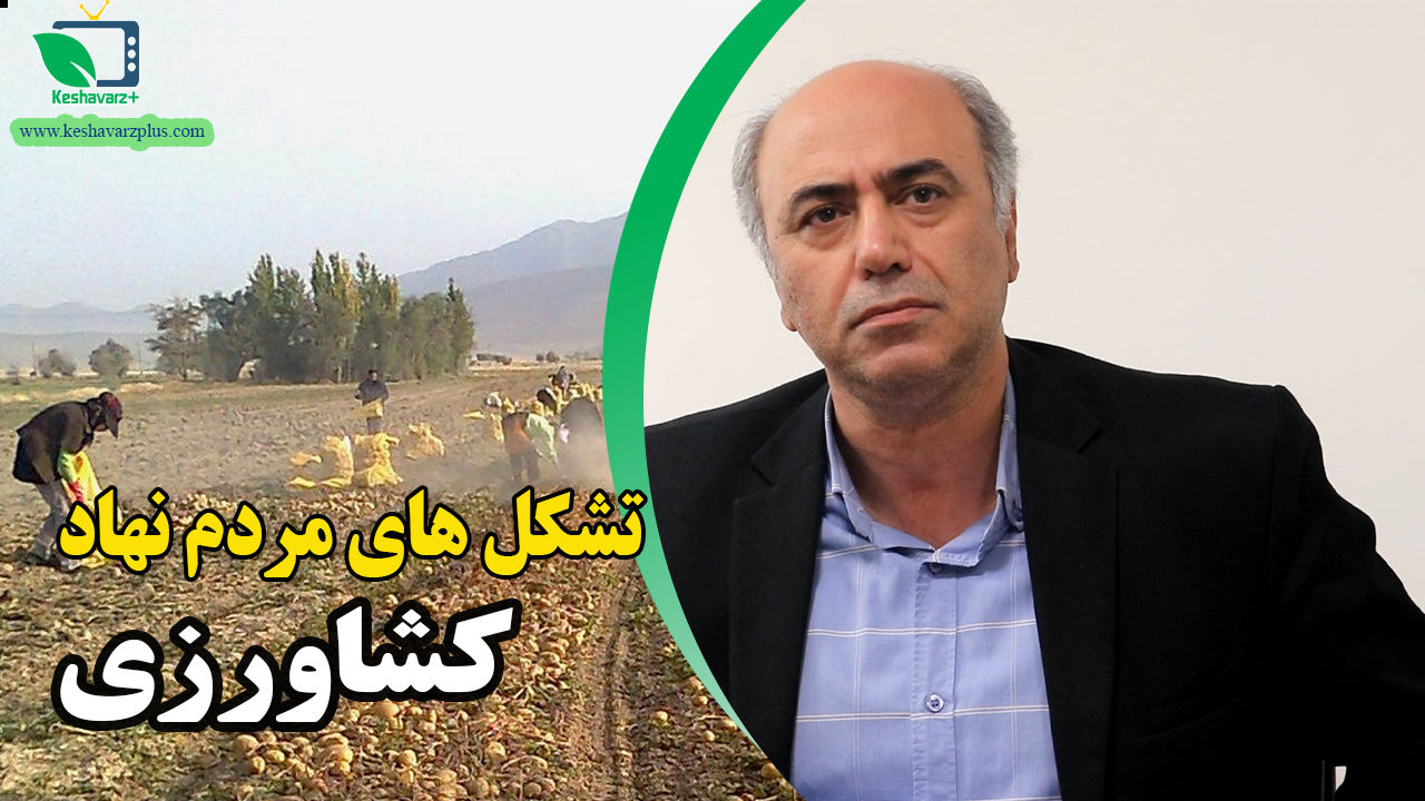هیئت مدیره جدید مجمع ملی خبرگان تا ۲ماه آینده کار خود را آغاز می کند