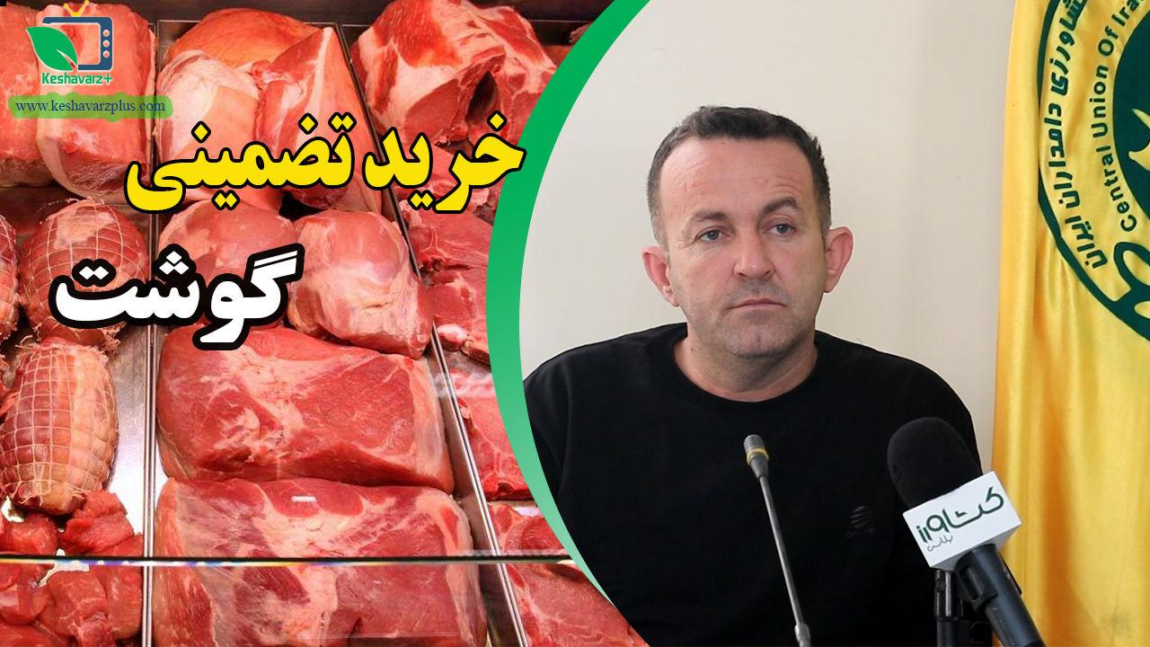 آغاز خرید تضمینی گوشت توسط اتحادیه دامداران کشور
